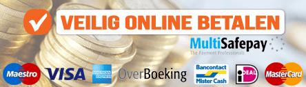 veilig betalen online